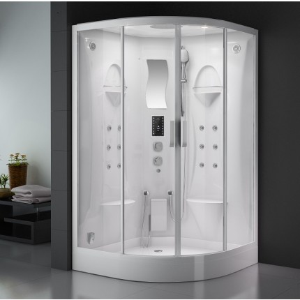 Wellness Luxury Steam Shower